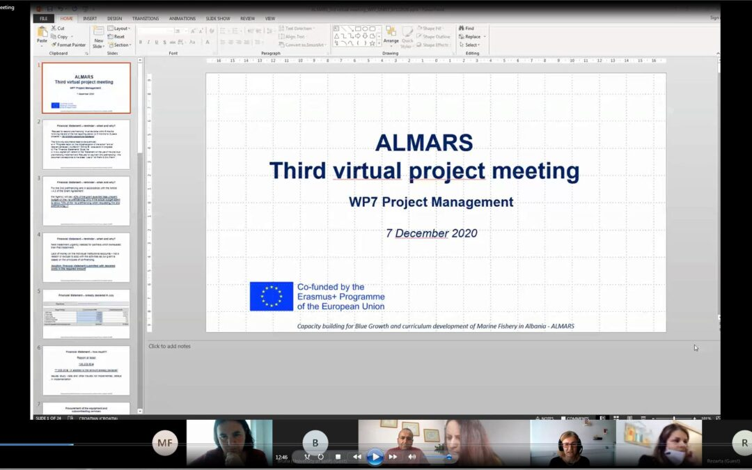 The third virtual Management meeting
